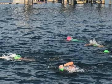 K swim 1