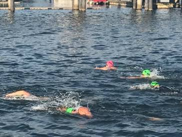 k swim 2